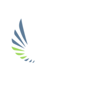 Refuge – The City Church